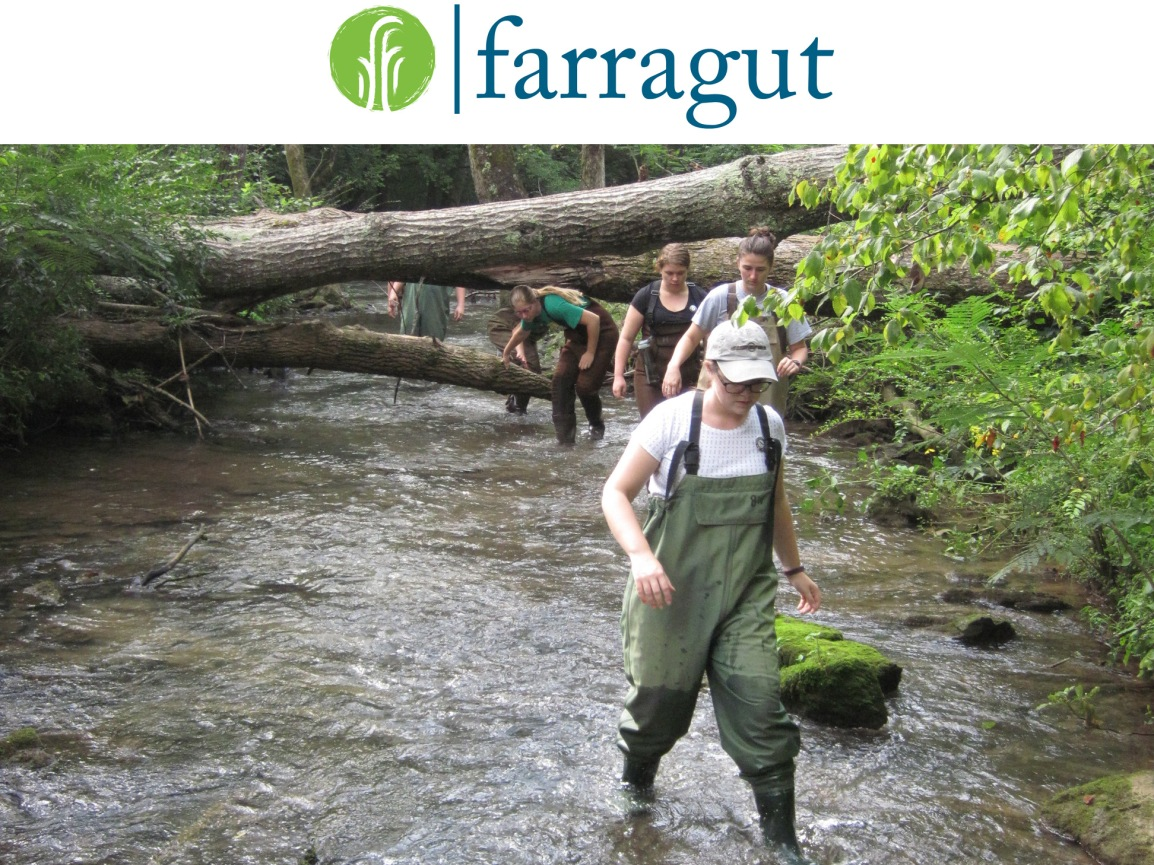 Town of Farragut, Stormwater Matters