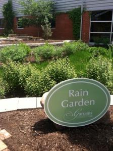 UT_raingarden